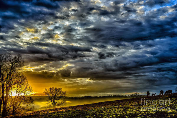 Photograph - Sunrise Grazing Cloudy Day by Thomas R Fletcher