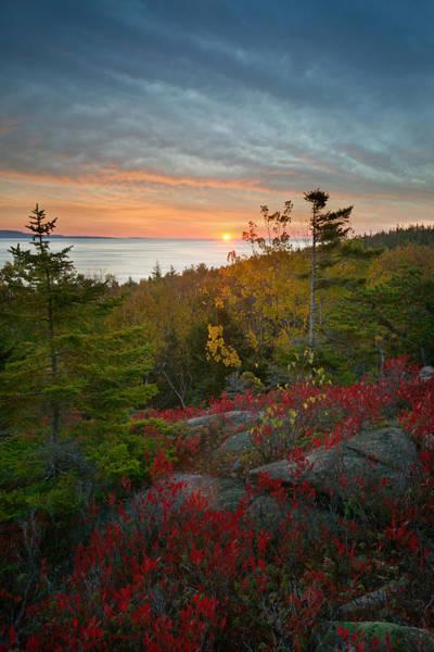 Photograph - Sunrise Great Head Anp by Darylann Leonard Photography
