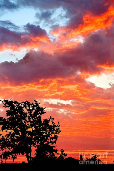 Photograph - Sunrise by Mae Wertz