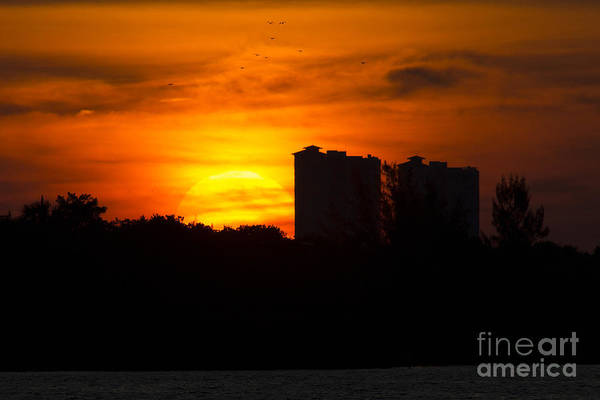 Photograph - Sunrise by Meg Rousher