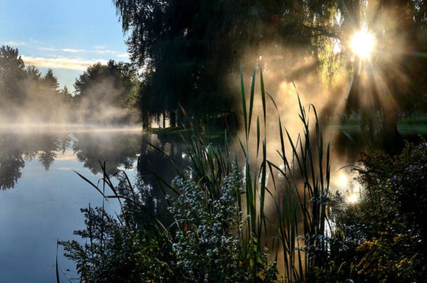 Photograph - Sunrise Mist At A Marsh by Steve Somerville