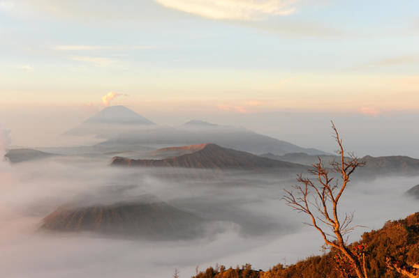 Wall Art - Photograph - Sunrise On Bromo by Jessica Rose