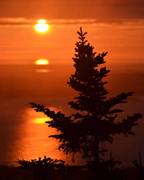 Photograph - Sunrise On Cadillac Mountain Bar Harbor Maine by Toby McGuire