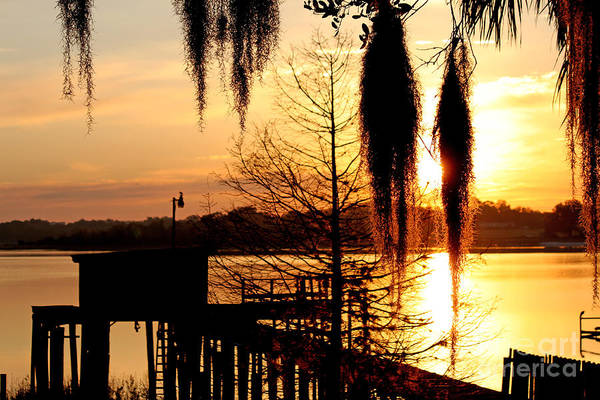 Photograph - Sunrise On Lake Weir - 7 by Tom Doud