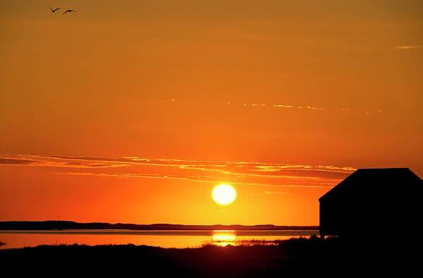 Cape Cod Sunset Photograph - Sunrise Over Coastal Lake by John Greim/science Photo Library
