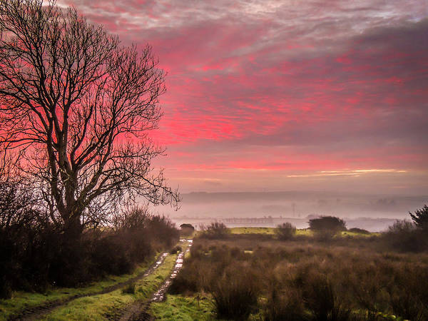 Photograph - Sunrise Over Decomade Pasture In County Clare by James Truett