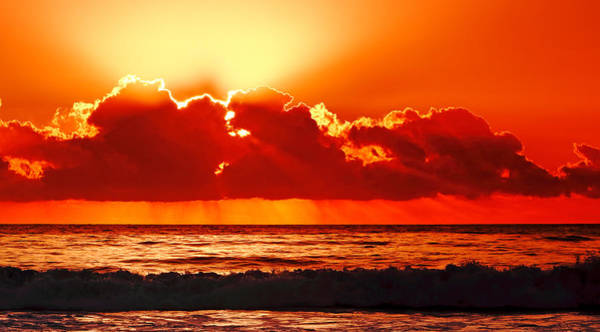 Photograph - Sunrise Over Forster Beach by Nicholas Blackwell