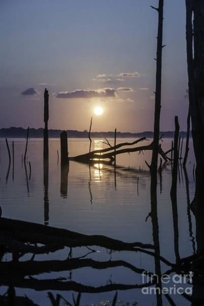 Photograph - Sunrise Over Manasquan Reservoir by Debra Fedchin