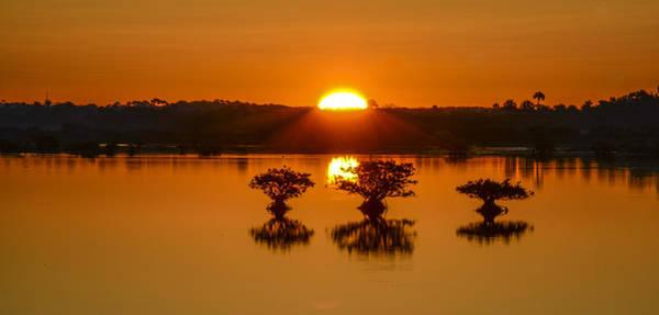Blye Photograph - Sunrise Over Mangroves by Kenneth Blye