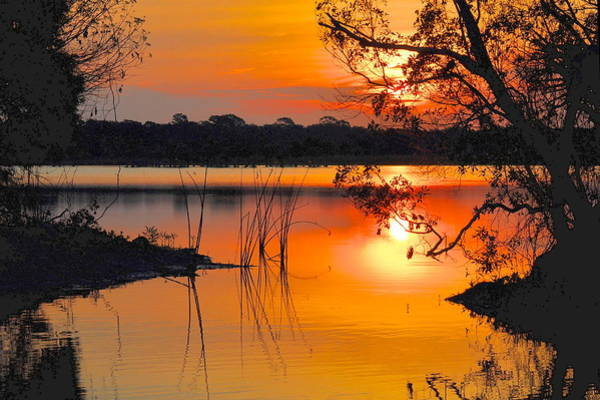 Photograph - Sunrise Over Orlando Wetlands by AnnaJo Vahle