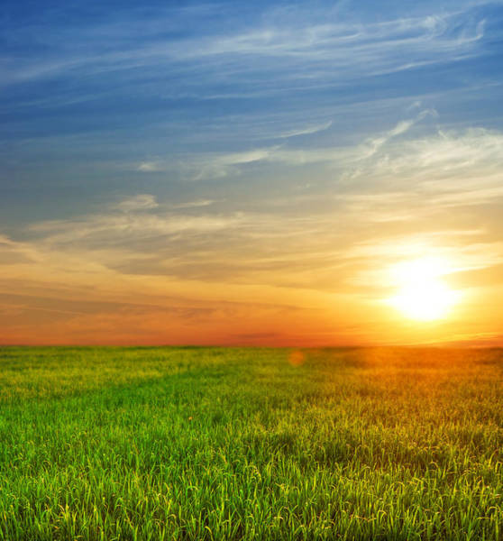 Environmental Conservation Photograph - Sunrise Over The Fields by Khoj badami