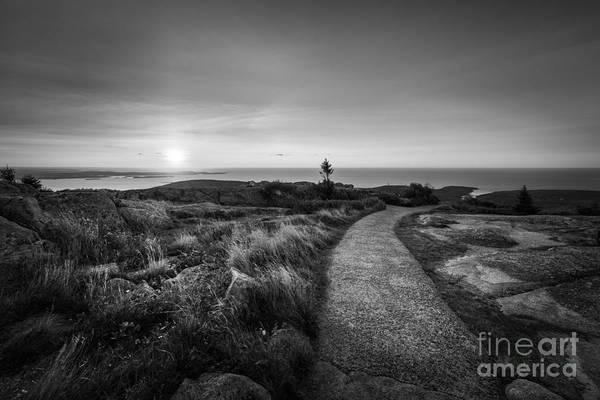 Mv Photograph - Sunrise Path At Cadillac Mountain Bw by Michael Ver Sprill