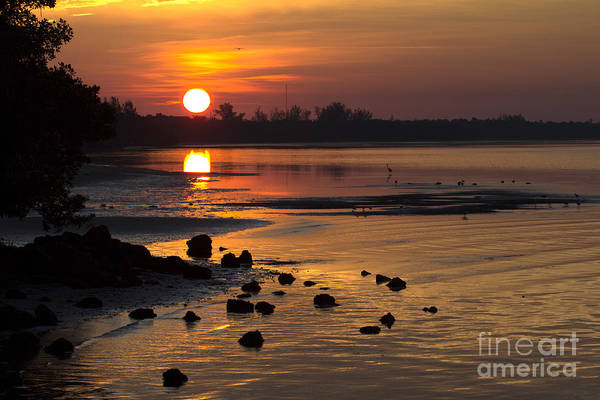 Sunrise Photograph Art Print