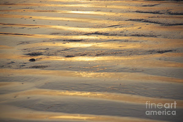 Photograph - Sunrise Ripple by Michael Mooney