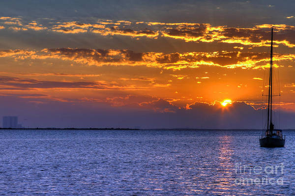 Wall Art - Photograph - Sunrise Sail by Rick Mann