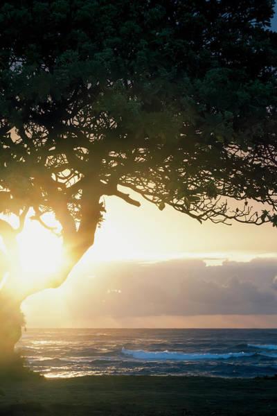 Wall Art - Photograph - Sunrise Seen From Lydgate Beach Park by Ian Ludwig