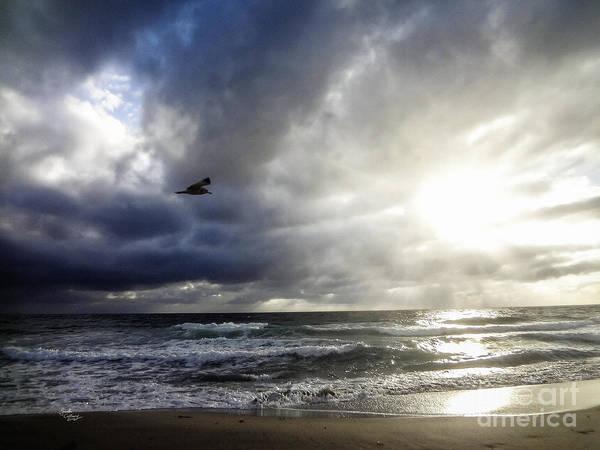 Photograph - Sunrise South Florida Treasure Coast by Ginette Callaway