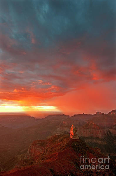 Photograph - Sunrise Storm Point Imperial North Rim Grand Canyon Np Arizona by Dave Welling