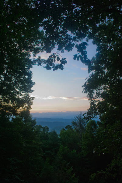 Photograph - Sunrise Through The Trees by George Taylor