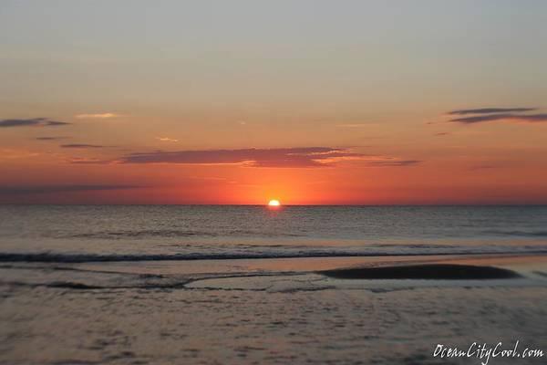 Photograph - Sun's Orange Glow by Robert Banach
