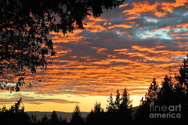 Photograph - Sunset 2 - Pender Island by Sharron Cuthbertson