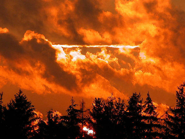 Photograph - Sunset 2 by Dragan Kudjerski