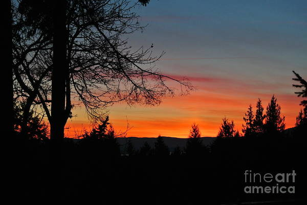 Photograph - Sunset 3 - Pender Island by Sharron Cuthbertson