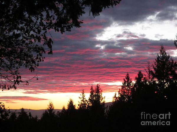 Photograph - Sunset 4 - Pender Island by Sharron Cuthbertson