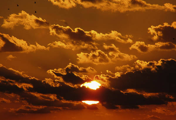 Photograph - Sunset 5 by Bob Slitzan
