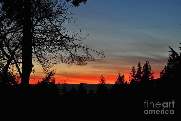 Photograph - Sunset 6 - Pender Island by Sharron Cuthbertson