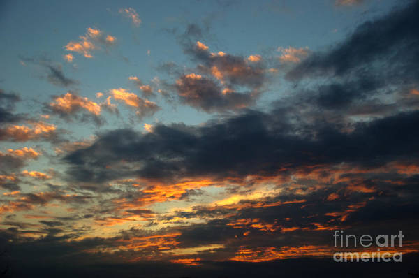 Photograph - Sunset And Blue Sky by Mark Dodd