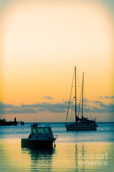 Photograph - Sunset And Boats In A Beautiful Harbour by David Hill