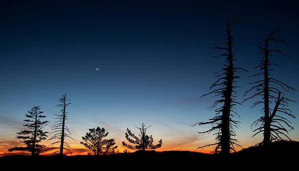 Donner Photograph - Sunset And Crecent Moon by Josh Miller Photography