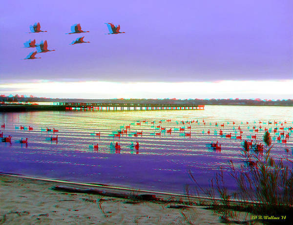 Anaglyph Photograph - Sunset And Geese - Use Red-cyan 3d Glasses by Brian Wallace