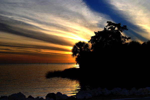 Photograph - Sunset At Bayport Park by Judy Hall-Folde