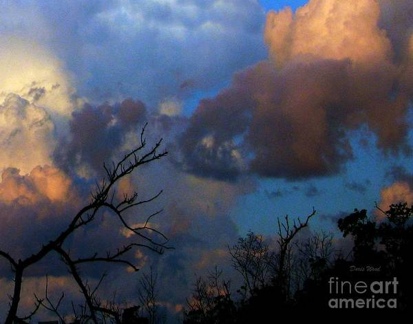 Mangroves Digital Art - Sunset At Clam Pass by Doris Wood