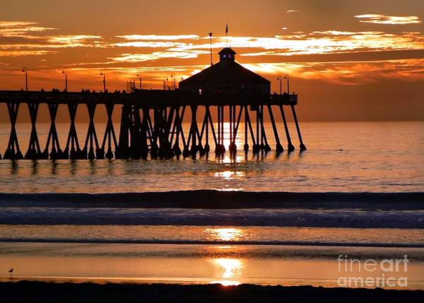 Wall Art - Photograph - Sunset At Ib Pier by Barbie Corbett-Newmin