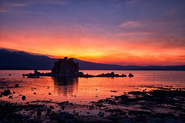 Photograph - Sunset At Mono Lake by Cat Connor