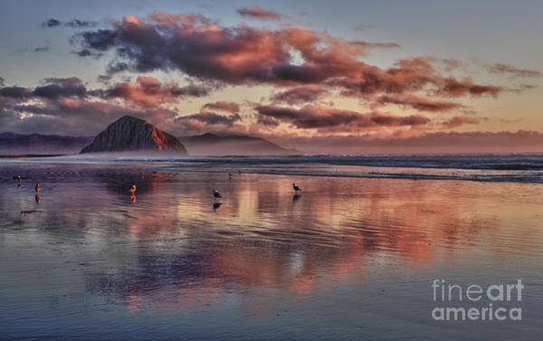 Sunset At Morro Strand Art Print