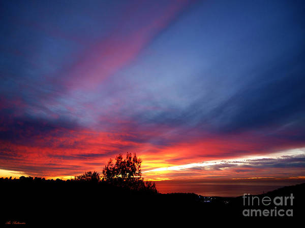 Sunset At Mount Carmel  Haifa 01 Art Print