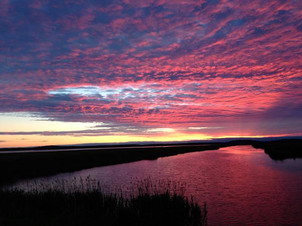 Sunset At North Pool Art Print by Nancy Landry