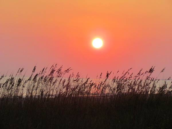 Photograph - Sunset At The Beach by Cynthia Guinn