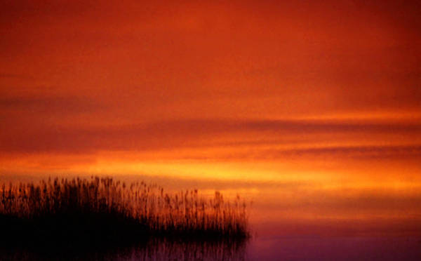 Photograph - Sunset At The Lake by Emanuel Tanjala