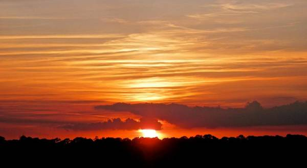 Disappearance Photograph - Sunset At The Park 3 by Joe Wyman