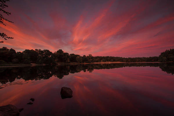 Photograph - Sunset At The Pond by Brian MacLean