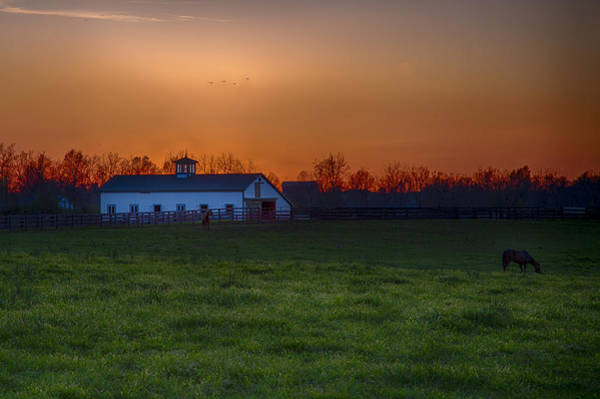 Photograph - Walmac Farm Ky  by Jack R Perry