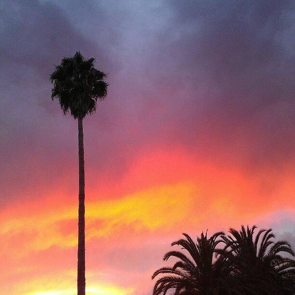 Sunset California Art Print