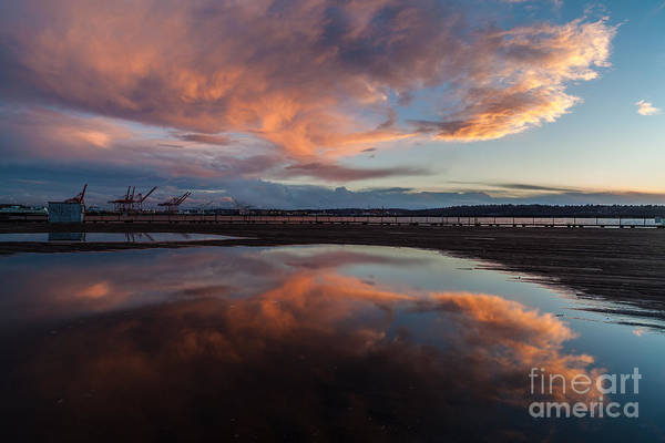 Puget Sound Photograph - Sunset Clouds Flourish by Mike Reid