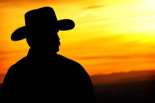 Photograph - Sunset Cowboy by Lincoln Rogers