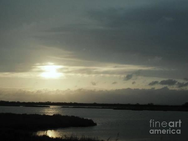 Photograph - Sunset by Cristina Stefan